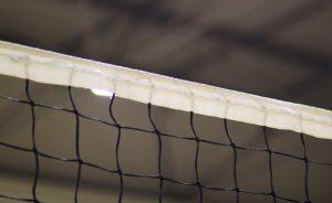 Volley Pallavolo Allenamento Rete