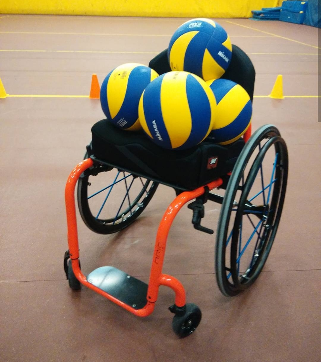 Carrozzina volley